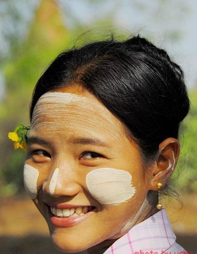 缅甸天然化妆品——黄香楝树