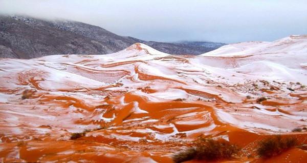 全球最热的撒哈拉沙漠居然下雪了 系37年来首次(组图)