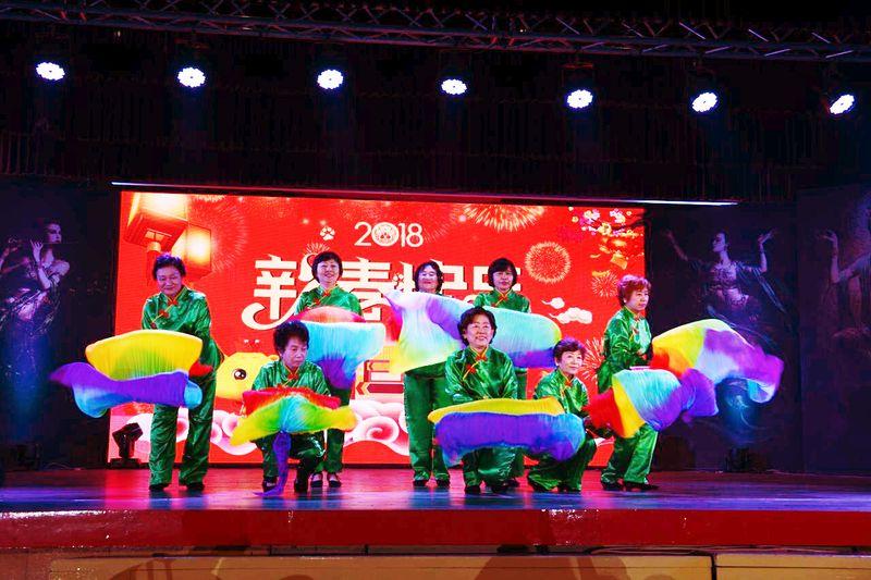 2018缅华妇女协会庆祝国际三八妇女节——联欢晚会演出花絮 (一)