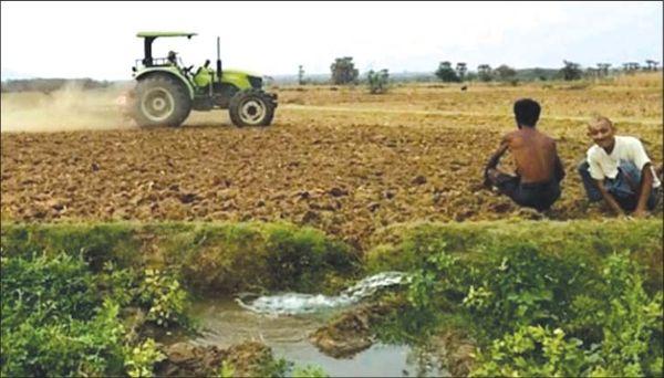 曼德勒省敏建、东达及卜巴山地区农民们种植厨房作物已获丰收