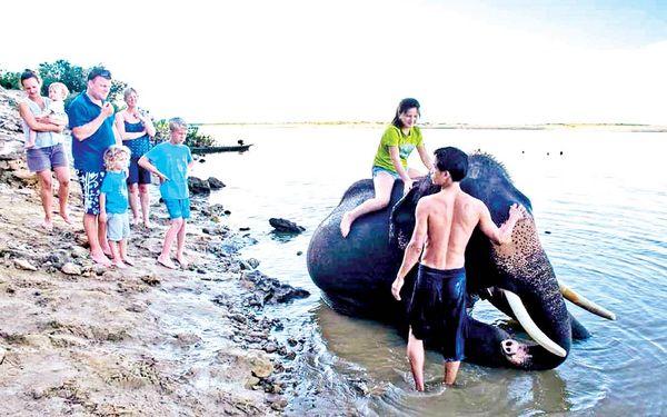 曼德勒省良吴县区柏林江岸大象营地已重新开放