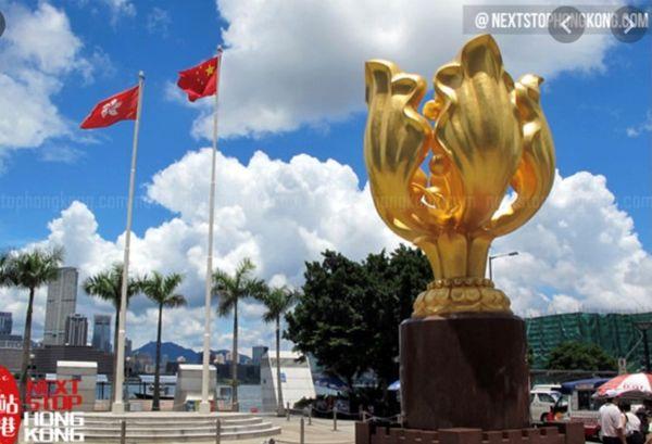 香港 - 东方明珠(苏顺路)