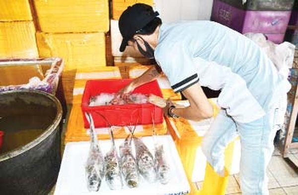 出口国外的高价虾及螃蟹等如今可在国内市场廉价购得